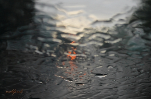 rain003