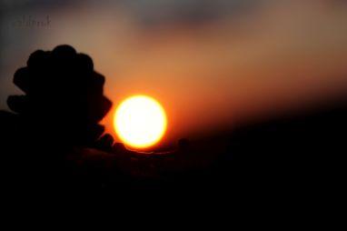 sunsetmay001