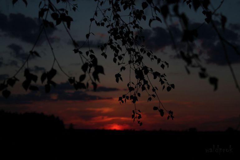 sunsetmay010