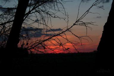 sunsetmay011